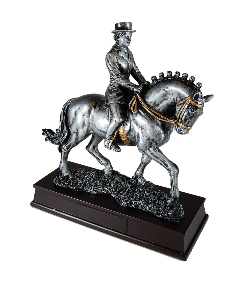 Koń I Jeździec Mężczyzna Ujeżdżenie